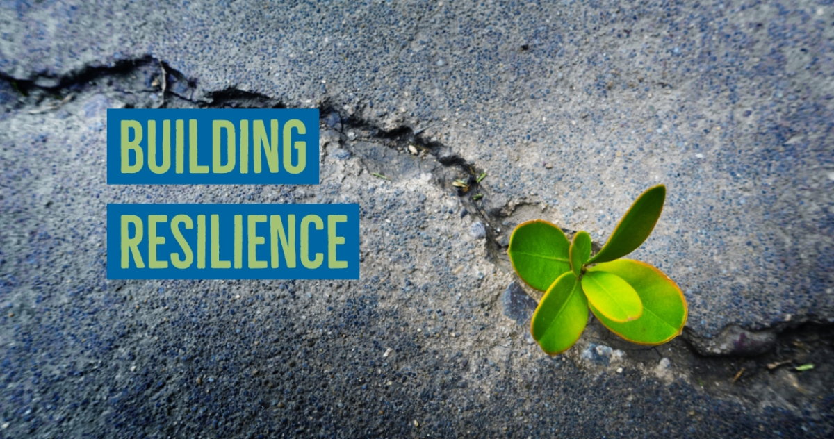 How to Cultivate Your Resilience
